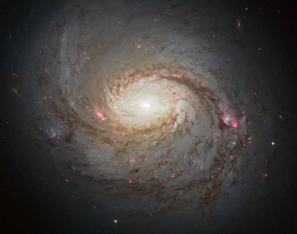 Galaxia M77 capturada por el Telescopio Espacial Hubble. En su núcleo, se encuentra el agujero negro supermasivo en el que se ha hecho este descubrimiento. Créditos: NASA / ESA /  A. van der Hoeven