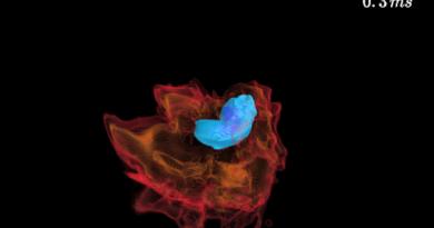 Astrónomos pueden haber descubierto agujeros negros primordiales